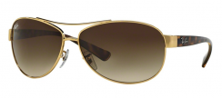 Ray-Ban Active Lifestyle RB3386 001/13 Arista