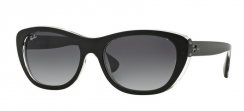 Ray-Ban RB4227 60528G Top Mat Black On Transparent