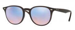 Ray-Ban RB4259 62311N Shiny Opal Brown