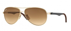 Ray-Ban RB8313 001/51 Arista